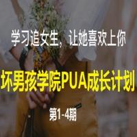 《坏男孩学院PUA成长计划》(共4期-46节课)