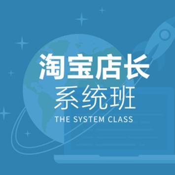 淘宝店长系统班,淘宝店铺销量提高全套培训视频教程